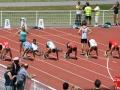 100m CAM (12)